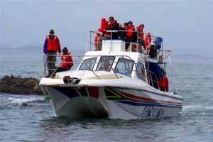 shark lady boat